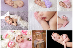 seattle baby photography